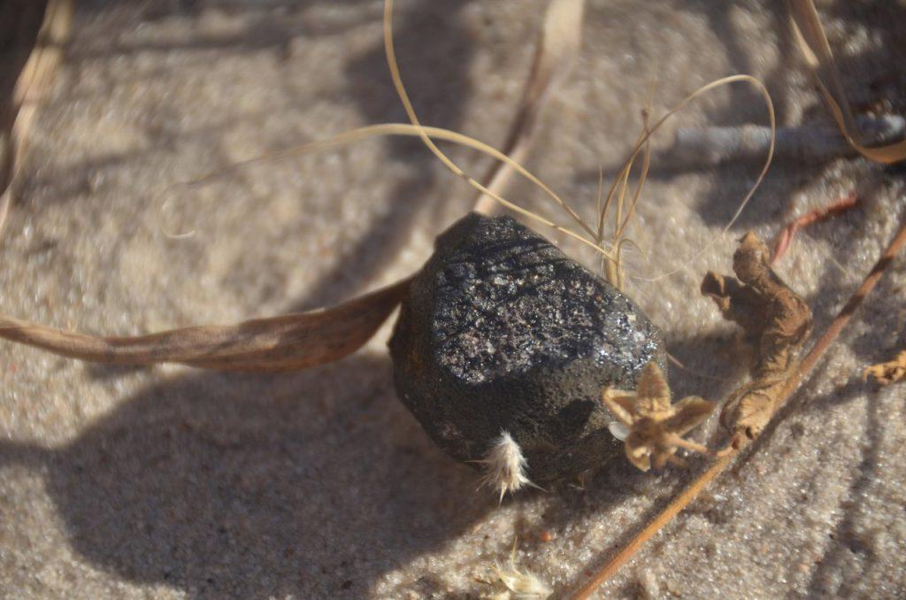 Imagem do meteorito do asteroide 2018 LA. Créditos: Peter Jenniskens